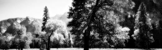 Yosemite Pano en infrarrojo Imagen de archivo libre de regalías