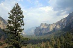 Yosemite park Zdjęcie Stock