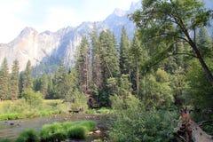 Yosemite park Zdjęcia Royalty Free