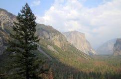 Yosemite park Obraz Stock