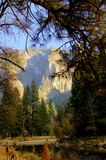 Yosemite park Royalty Free Stock Images