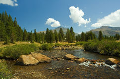 Yosemite park. Waterscape in Yosemite park, CA Royalty Free Stock Images