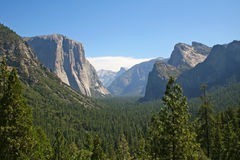 Yosemite Park in California, USA Stock Image