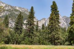 Yosemite park narodowy, usa Zdjęcie Stock