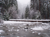 Yosemite park in sow. Royalty Free Stock Photo