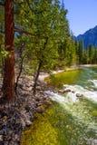Yosemite parka narodowego Merced rzeka w Kalifornia Zdjęcia Royalty Free