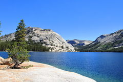 Yosemite parkerar - Kalifornien Royaltyfria Foton
