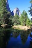 Yosemite parkerar - Kalifornien Royaltyfri Foto