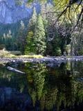 Yosemite reflection 4. Reflection of fir trees in a lake in Yosemite Valley, Yosemite National Park, California stock image