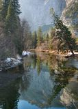 Yosemite Reflections. Winter reflections on the Merced River, captured in on a cold January morning in Yosemite National Park, California Royalty Free Stock Images