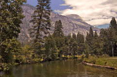 Yosemite River Royalty Free Stock Images