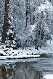 Yosemite river blanketed with snow Royalty Free Stock Images