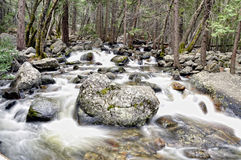 Yosemite river royalty free stock photo