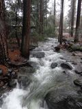 Yosemite River. A seasonal river flows during a storm in Yosemite Valley Stock Image