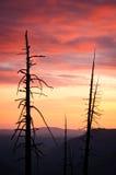 Yosemite sunset Stock Photography