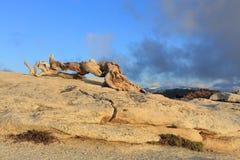 Yosemite-Tal Stockfotos