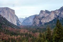 Yosemite-Tal an der Tunnel-Ansicht Stockbild
