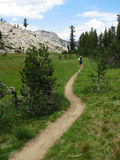 Yosemite Trail. A woman hikes away along a Tuolumne Meadows, Yosemite National Park wilderness trail across a meadow Royalty Free Stock Photo