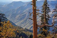 Yosemite valle Merced fiume novembre 2015 Fotografie Stock Libere da Diritti