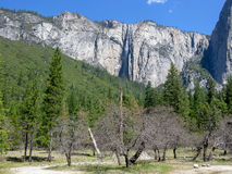 Yosemite Valley in California Royalty Free Stock Photo