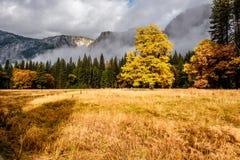 Yosemite Valley at cloudy autumn morning Stock Photo