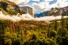 Yosemite Valley at cloudy autumn morning Royalty Free Stock Image