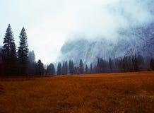 Yosemite Valley Fog Royalty Free Stock Image