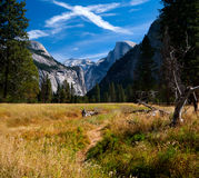 Yosemite Valley. In Yosemite National Park Royalty Free Stock Photos