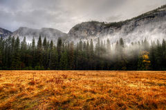 Yosemite Valley Stock Image