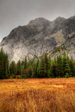 Yosemite Valley Stock Image
