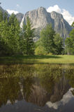Yosemite Valley reflection. Nice reflection in a meadow in Yosemite valley, California stock photo