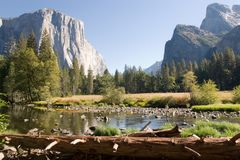 Yosemite Valley View Royalty Free Stock Photography