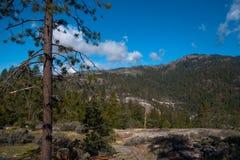 Yosemite Valley View Royalty Free Stock Photos