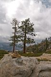 Yosemite Valley in the western Sierra Nevada mountains of California Royalty Free Stock Photos