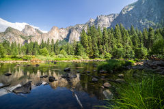 Yosemite Vally. This is a picture taken from the beautiful Yosemite Valley in California featuring the Yosemite Merced River and El Capitan Royalty Free Stock Photography