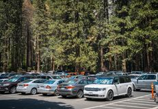 Summer car tour over the US natural parks. Parking in Yosemite Village Royalty Free Stock Image