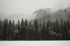 Yosemite Walls in  Winter. Breathtaking view of Yosemite walls in the National Park in the winter snow Stock Photography