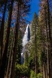 Yosemite-Wasserfall Stockfotos