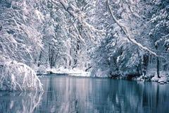 Yosemite Winter Stock Photography