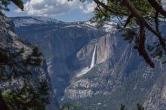Yosemite - Yosemite Falls Royaltyfri Foto
