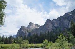 Yosemitebergen en bomen stock foto