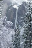 Yosemitedalingen en bomen met sneeuw worden bedekt die Stock Afbeelding