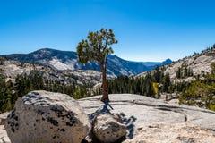 Yosemites backcountry an der goldenen Stunde stockfotos