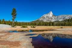 Yosemites backcountry an der goldenen Stunde stockfoto