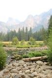 Yosemitestaat Parc Stock Afbeeldingen