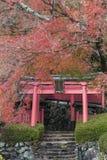 Yoshimine-dera świątynia w jesieni Zdjęcie Royalty Free