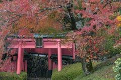 Yoshimine-dera świątynia w jesieni Fotografia Stock