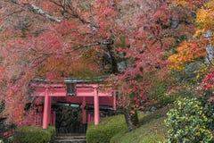 Yoshimine-dera świątynia w jesieni Zdjęcie Stock