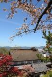 Yoshino, Japan stockfotografie