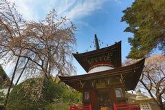 Yoshinoyama,奈良日本 免版税库存照片